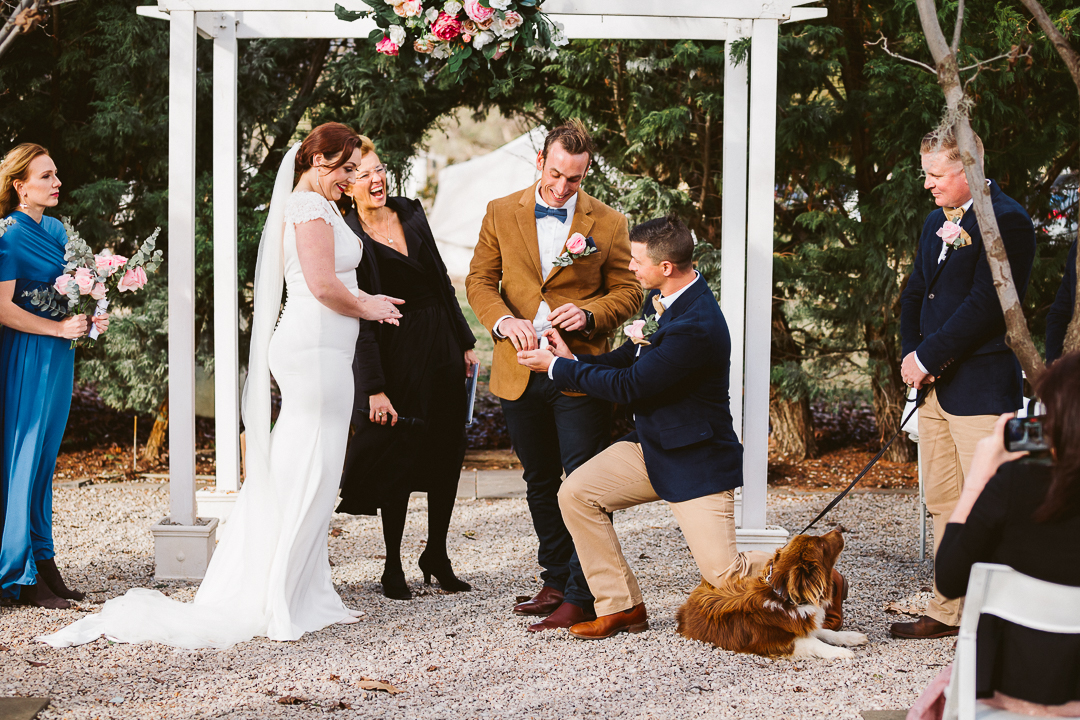 Amy-and-Jonathan-Wedding-Blue-Wren-Farm-Mudgee-273