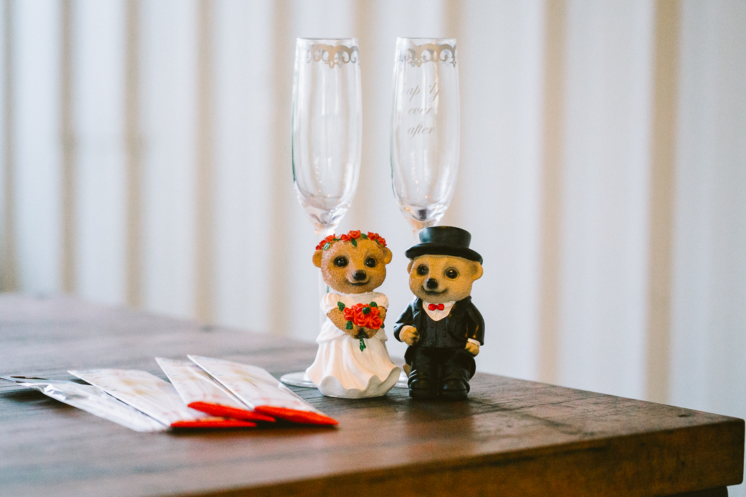 Myf-and-Reece-Hunter-Valley-Wedding-419